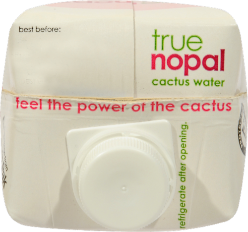True Nopal Cactus Water Perspective: top