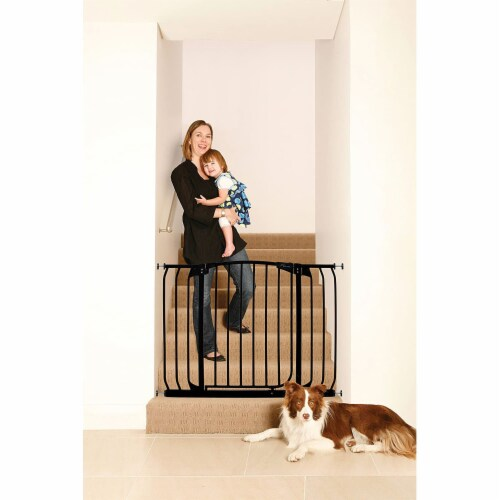 Dreambaby L798B Chelsea 38 to 46 Inch Auto-Close Baby Pet Safety Gate, Black Perspective: top