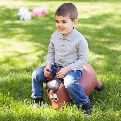 Farm Hoppers Inflatable Bouncing Brown Horse Perspective: top