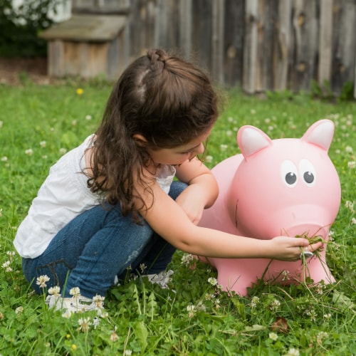 Farm Hoppers Inflatable Bouncing Pink Pig Perspective: top