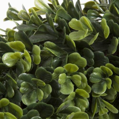 Pure Garden Boxwood Wreath - 12 inch Round Artificial Greenery Indoor Outdoor Perspective: top