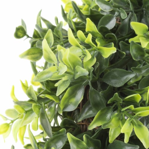 Artificial Opal Basil Leaf 11.5 inch Round Wreath by Pure Garden Perspective: top