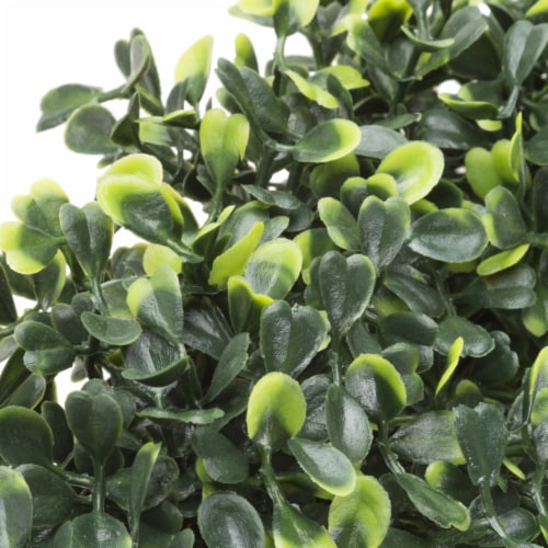Artificial Boxwood 19.5 inch Round Wreath by Pure Garden Perspective: top