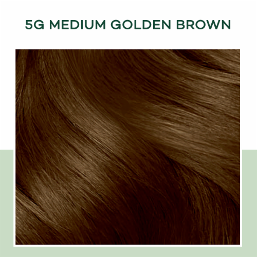 Clairol Natural Instincts 5G Medium Golden Brown Hair Color Perspective: top