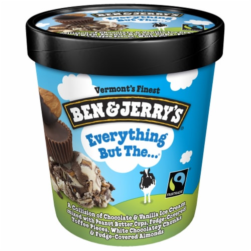 Ben & Jerry's Everything But The....Ice Cream Perspective: top