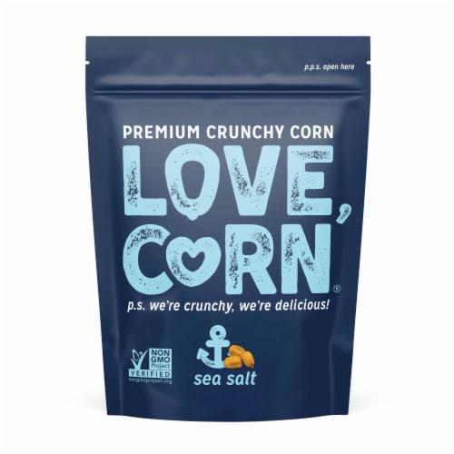 Love Corn Sea Salt Roasted Corn Snack Perspective: top