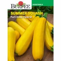 Burpee Squash Fort Know Hybrid - 1 pk