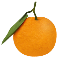 Tangerines - Satsuma - Mammoth