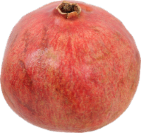 Pomegranate - Small