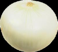 Onions - White - Peeled