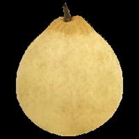 Yali Pear - 1 lb