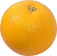 Organic Navel Oranges - Red