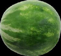 Organic Red Seedless Watermelon