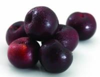 Plums – Organic Black