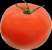 Organic - Tomatoes