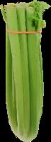Organic - Celery - Large