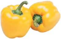 Organic - Peppers - Bell - Yellow