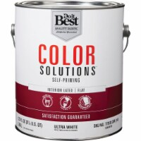 Do it Best Int Flat Ultra Wht Paint CS46W0801-16