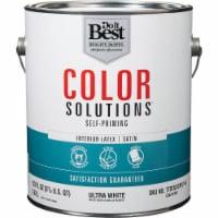Do it Best Int Sat Ultra Wht Paint CS42W0801-16
