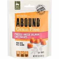 Abound Grain Free Freeze-Dried Salmon Cat Treats