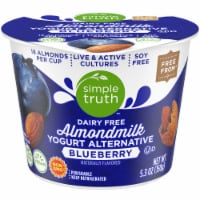 Simple Truth™ Dairy Free Blueberry Yogurt Alternative