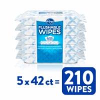 Kroger® Flushable Wipes - 5 pk / 42 ct
