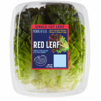 Kroger® Red Leaf Single Cut Leaf