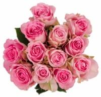 BLOOM HAUS™ Pink Roses