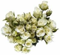 Bloom Haus Delight White Rose Boquet