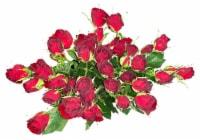 Bloom Haus Delight Red Rose Bouquet - 10-stem