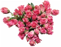 BLOOM HAUS Pink Rose Boquet