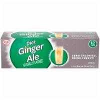 Big K® Diet Ginger Ale