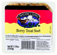 Nature's Song® Berry Treat Suet