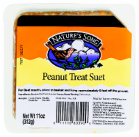 Nature's Song® Peanut Treat Suet