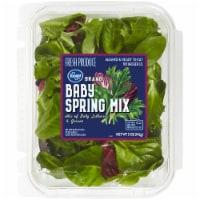 Kroger® Baby Spring Mix