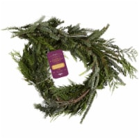 Private Selection Outdoor Holiday Mixed Garland