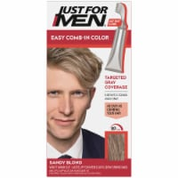 Just For Men AutoStop Comb-In A-10 Sandy Blonde No-Mix Hair Color - 1 ct