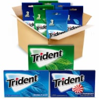 Trident Mint Gum Variety Pack