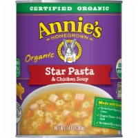Annie's Organic Star Pasta & Chicken Soup