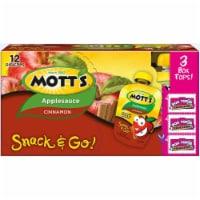 Motts Cinnamon Apple Sauce - 48 ct / 3.2 oz