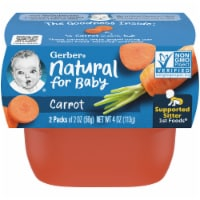 Gerber 1st Foods Carrot Baby Food