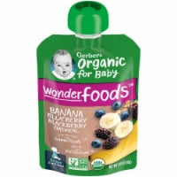 Gerber Organic Banana Blueberry Blackberry & Oatmeal Pouch