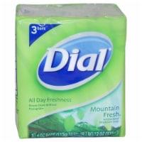 Dial Mountain Fresh Antibacterial Deodorant Soap 3 x 4 oz - 3 x 4 oz