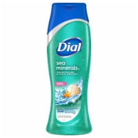 Dial Sea Minerals Enriching Body Wash