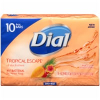 Dial® Tropical Escape® Antibacterial Deodorant Bar Soap