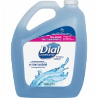 Dial  Hand Wash Refill 15922CT - 1