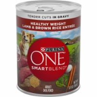 Purina One Smart Blend Lamb & Brown Rice Adult Wet Dog Food - 12 ct / 13 oz