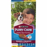 Purina Puppy Chow Healthy Morsels 32 Lb. Beef Flavor Dry Puppy Food 178108 - 32 Lb.