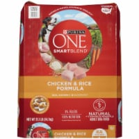 Purina ONE SmartBlend Chicken & Rice Formula Natural Dry Dog Food