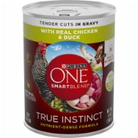 Purina ONE SmartBlend True Instinct Tender Cuts in Gravy with Real Chicken & Duck Wet Dog Food